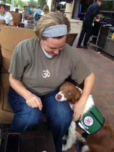 Diabetic Alert Dog Service Dog